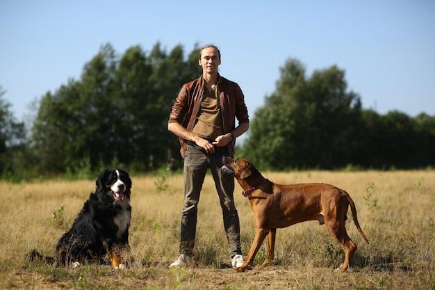 Giovane che cammina con due cani bernese mountain dog e ridgeback sul campo estivo Foto Premium