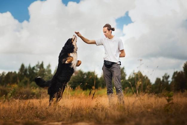 Giovane che cammina con il bovaro bernese sul campo estivo Foto Premium