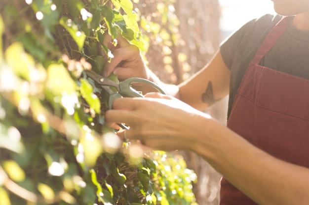 Giovane donna di vista laterale che prende cura della pianta Foto Gratuite
