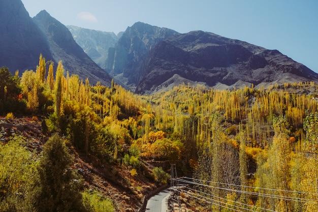 Gli alberi variopinti nella stagione di autunno contro la catena montuosa. Foto Premium