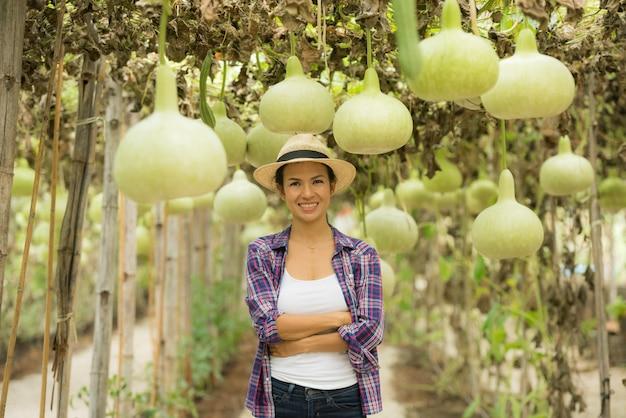 Grandi palle di zucca a fiaschetta in aziende agricole che coltivano verdure invernali fredde in thailandia Foto Gratuite