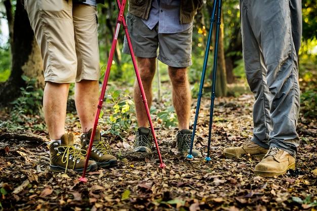 Gruppo di adulti senior trekking nella foresta Foto Premium
