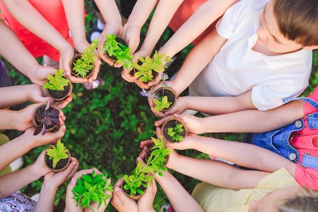 Gruppo di bambini che tengono le piante in vasi di fiori Foto Premium