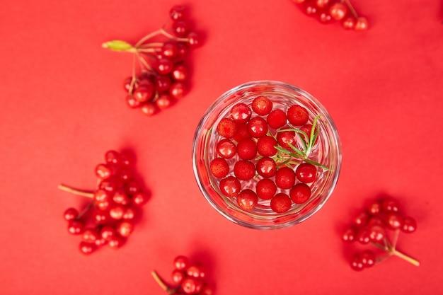 Gustosa bevanda fresca fredda, acqua disintossicante con bacche di viburno, rosmarino Foto Premium