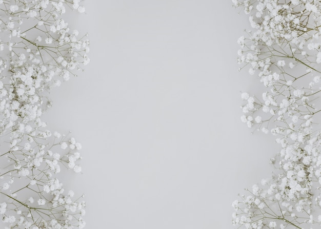 Gypsophila su sfondo grigio con copia spazio al centro Foto Gratuite
