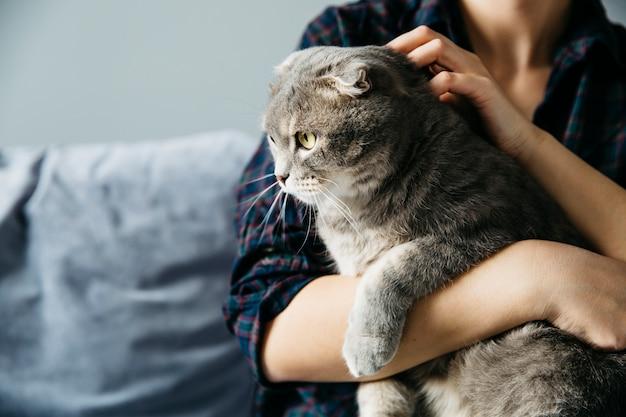 Holding femminile sul gatto delle mani Foto Gratuite