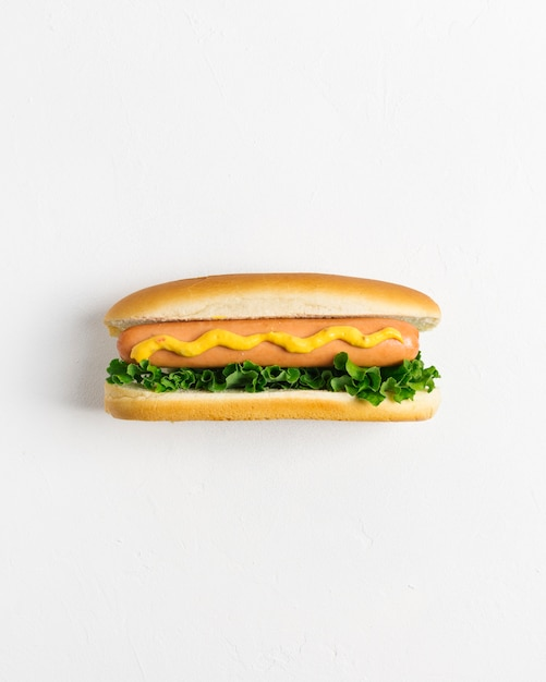Hot dog piatto con copyspace Foto Gratuite