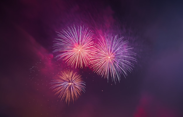 I bei fuochi d'artificio variopinti salutano contro il cielo notturno scuro Foto Premium