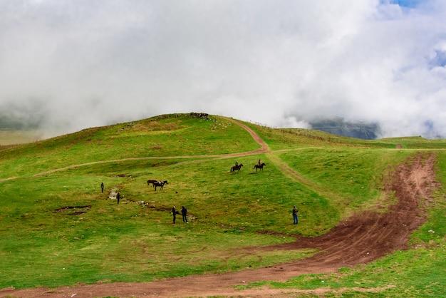 I cavalli pascolano nelle montagne della georgia. distretto di kazbegi, paesaggio autunnale. Foto Premium