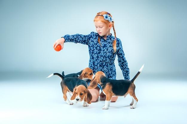 I cuccioli felici del cane da lepre e della ragazza su fondo grigio Foto Gratuite