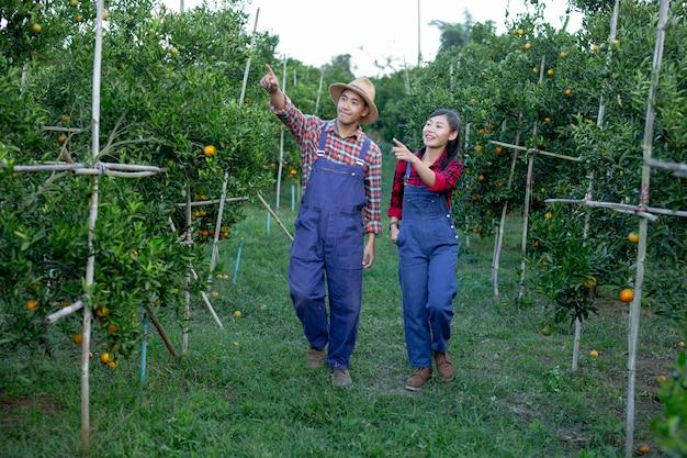 I giovani agricoltori stanno raccogliendo l'arancia Foto Gratuite