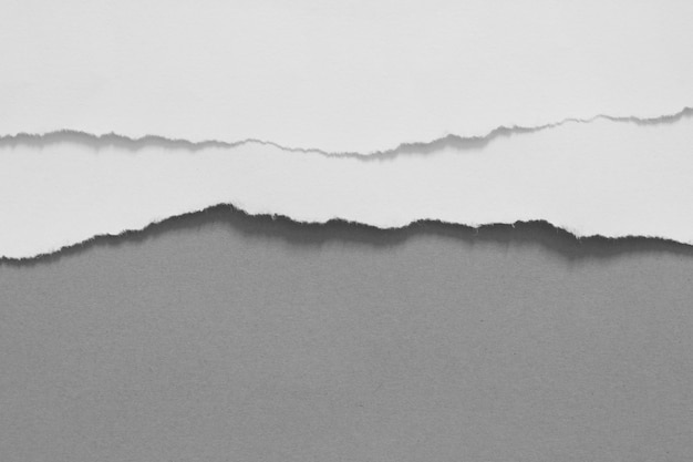 I pezzi di carta lacerata strutturano il fondo, copiano lo spazio. Foto Premium