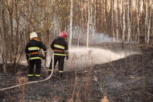 I soccorritori estinguono gli incendi boschivi Foto Premium