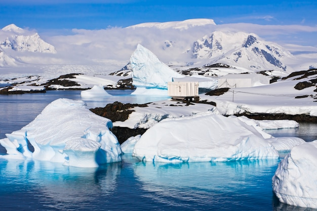 Iceberg in antartide Foto Premium