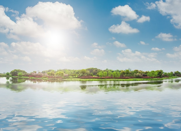 Il bellissimo parco Foto Gratuite