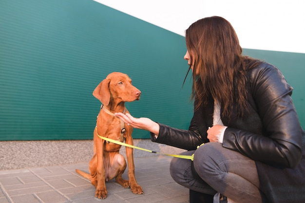 Il cane marrone e la padrona siedono sulla strada Foto Premium