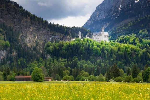 Il castello di neuschwanstein è un palazzo del revival romanico del xix secolo su una collina aspra Foto Premium