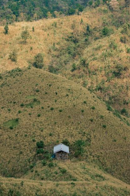 Il concetto di deforestazione consiste in capanne e foreste distrutte. Foto Premium