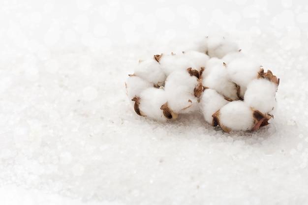 Il cotone lanuginoso fiorisce su un fondo di sale marino bianco di cristallo con lo spazio della copia e il bokeh nei precedenti. avvicinamento. messa a fuoco selettiva. concetto spa. Foto Premium