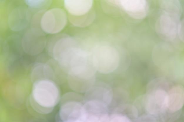 Il fondo verde astratto del bokeh della foglia, verde ha offuscato il fondo astratto dal fondo del sole del fogliame Foto Premium