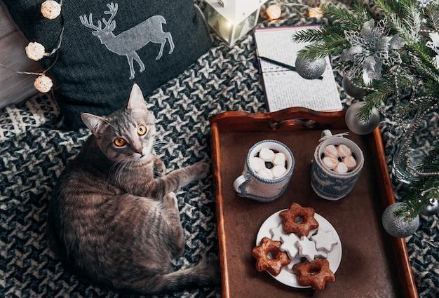 Il gatto si trova sul vassoio con cioccolata calda sotto l'albero di natale Foto Premium