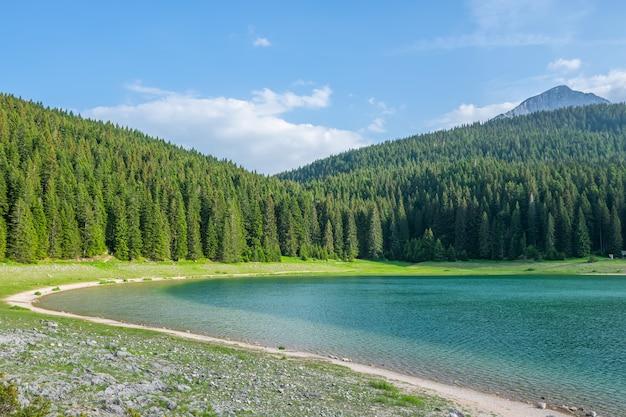 Il magnifico lago nero si trova nel parco nazionale del durmitor, nel nord del montenegro. Foto Premium