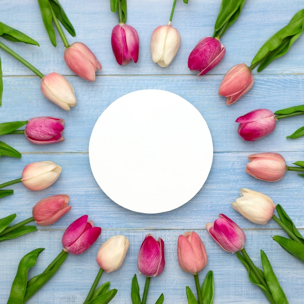 Il modello di nozze con carta bianca rotonda e tulipano rosa fiorisce sulla vista superiore del tavolo blu. bellissimo motivo floreale stile piatto laico Foto Premium