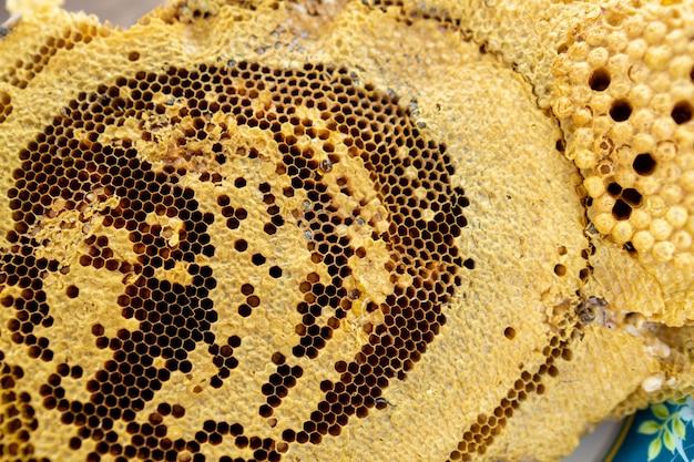 Il nido d'ape del villico alimento dolce naturale. Foto Premium