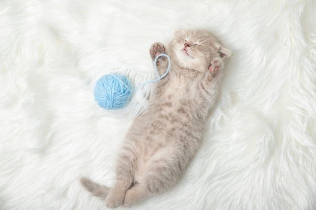 Il piccolo gattino dello zenzero dorme su un tappeto bianco. dormire. rilassamento Foto Premium