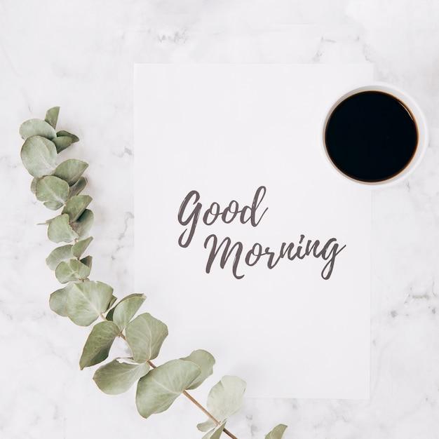 Il primo piano del ramo dell'eucalyptus con il buongiorno manda un sms a sulla tazza di caffè e della carta sopra fondo strutturato del marmo Foto Gratuite