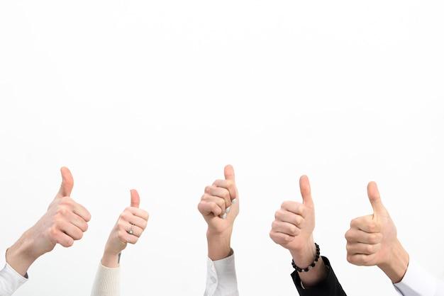 Il primo piano della mano della gente di affari che mostra sfoglia sul segno isolato sopra fondo bianco Foto Gratuite