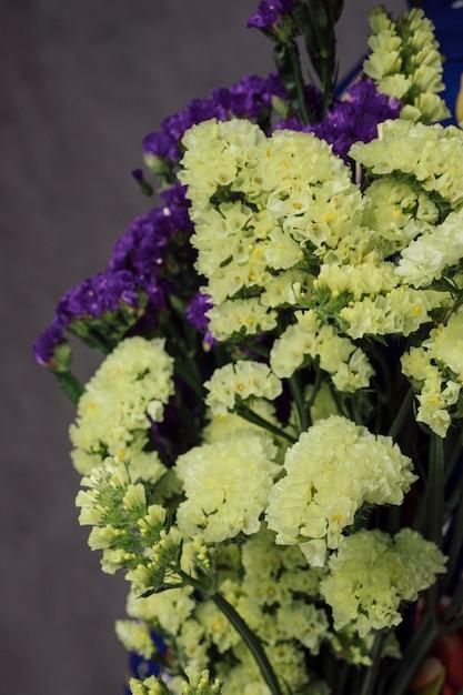 Il primo piano di bei fiori gialli e porpora del limonium contro la parete grigia Foto Gratuite