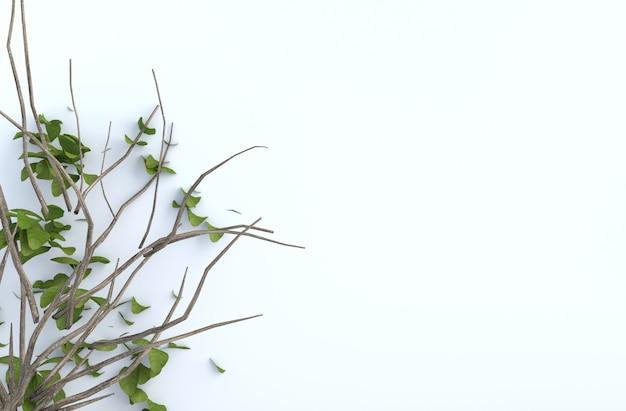 Il ramo e il colpo di albero va sulla parete del cemento bianco. rendering 3d di sfondo. Foto Premium