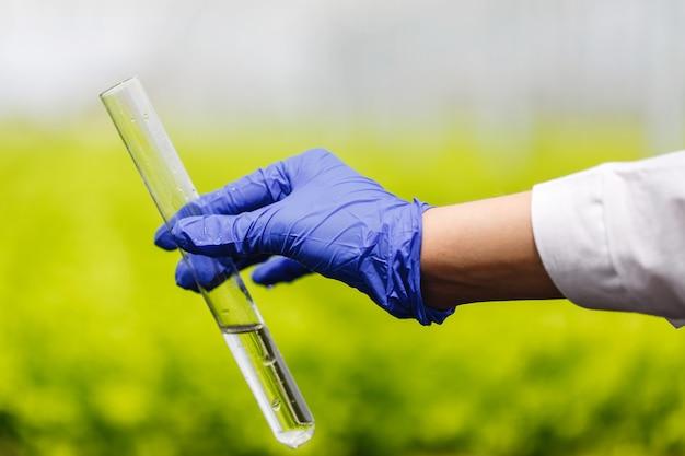 Il ricercatore tiene una provetta con acqua in una mano in un guanto blu Foto Gratuite