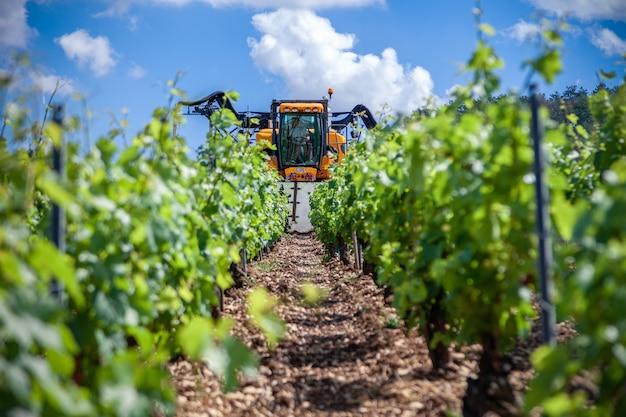 Il trattore arancione coltiva il campo, spruzzando il vigneto con fungicida, spruzza pesticidi tra filari di vigneti Foto Premium