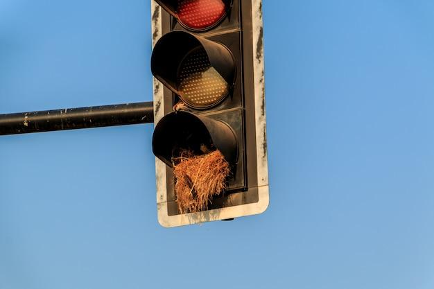 Il vecchio segnale rosso giallo verde del semaforo ha combinato la bicicletta ed il semaforo pedonale in tailandia. Foto Premium