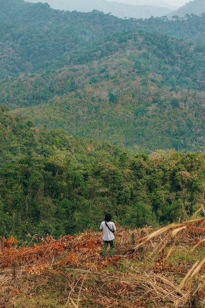 Immagine di concetto di deforestazione che consiste di un uomo irriconoscibile che cammina tra alberi abbattuti in una silvicoltura. Foto Premium