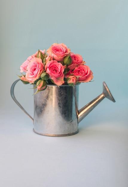 Immagine floreale minimale con mini annaffiatoio e rose rosa contro il blu pastello Foto Premium