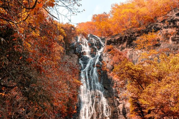 Incredibile cascata tra le montagne autunnali Foto Premium