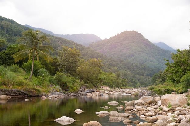 Innaffi la montagna scorrente della corrente al villaggio di kiriwong, nakorn sri thammarat, tailandia. Foto Premium
