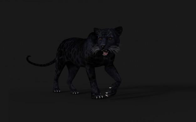 Isolato della pantera nera dell'illustrazione 3d sul nero Foto Premium