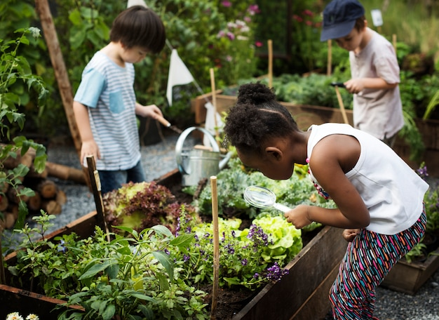 Kid in un giardino esperienza e idea Foto Premium