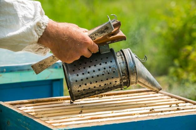 L'apicoltore fuma sotto l'alveare. cornice con api. fumatore di api fumigato apicoltore. apicoltura Foto Premium