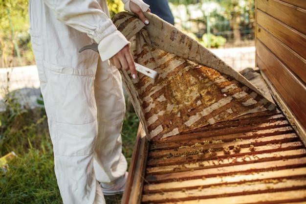 L'apicoltore in tuta sta lavorando all'apiario. apertura di alveare in legno Foto Premium