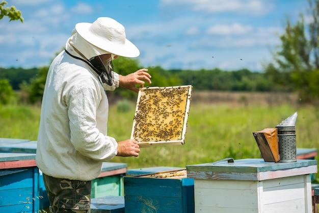 L'apicoltore sta lavorando con api e alveari sull'apiario. apicoltore sull'apiario. Foto Premium
