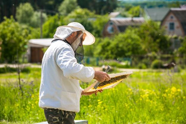 L'apicoltore sta lavorando con api e alveari sull'apiario. apicoltura. miele. Foto Premium
