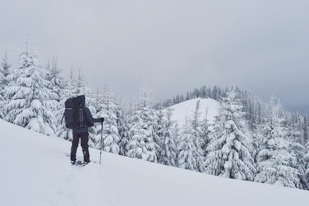 L'escursionista, con lo zaino, si arrampica sulla catena montuosa e ammira la cima innevata. epica avventura nel deserto invernale Foto Gratuite