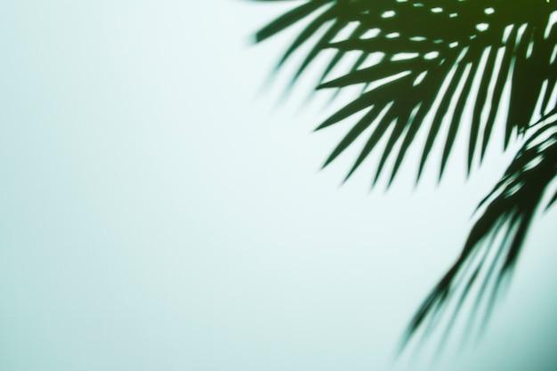 L'ombra delle foglie di palma su fondo blu Foto Gratuite