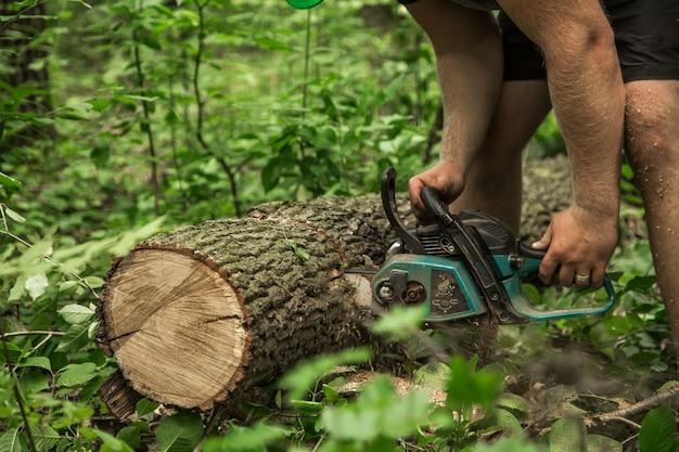 L'uomo con una motosega taglia l'albero Foto Gratuite