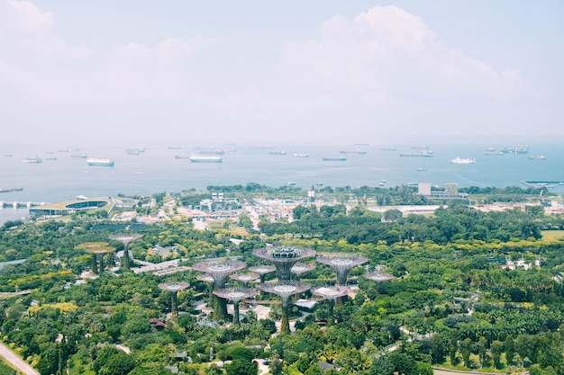 La bella veduta panoramica ha sparato del giardino dalla baia a singapore Foto Gratuite
